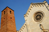 Katedrála pietrasanta lucca, itálie — Stock fotografie