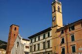 Cattedrale di pietrasanta lucca italia — Foto Stock