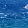Stock Photo: Lone windsurfer in ocecatching wave