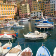 Country camogli -  