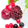 Close up of frozen mixed fruit - berries — Stock Photo #9577446