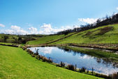 Tranquil pond in rolling English countryside — Stock Photo