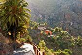 Tropikal dağ köyü — Stok fotoğraf