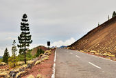 The road to Teide National park, Tenerife — Stock Photo