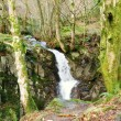 Scenic Waterfall At Rydal Hall - Stock Photo