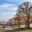 Stock Photo: Winter In English Lake District