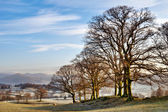 Winter In The English Lake District — Stock Photo