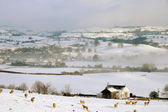 Small Farm Land in Snow Covered Hills — Stock Photo