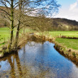 Stock Photo: Stream in English Lake District