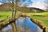 Stream in Engelse lake district — Stockfoto