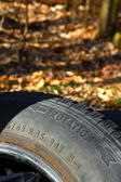 Used tyre at the forrest — Stock Photo