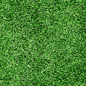 Grass background — Foto de Stock
