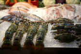 Lobster in market — Stock Photo