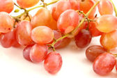 Grapes isolated in white background — Stock Photo