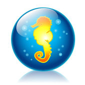 Seahorse glossy icon — Stock Photo