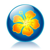 Aloha glossy icon — Stock Photo