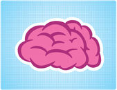 Brain — Stock Vector