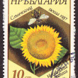 Postal stamp — Stock Photo #10263809