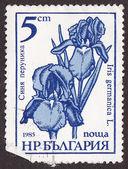 Postal stamp — Stock Photo