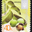 Ukrainian Postal Stamp — Stock Photo