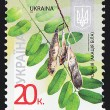 Ukrainian Postal Stamp — Stock Photo #10403272