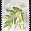 Ukrainian Postal Stamp — Stock Photo #10403645