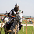 Riding knight — Stock Photo #10586540