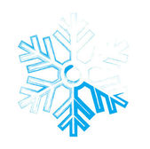 Ice snowflake — Stock Vector