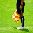Linesman — Stock Photo