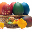 Easter eggs and decorations - Stock Photo