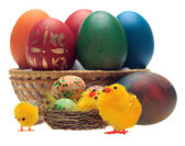 Easter eggs and decorations — Stock Photo