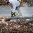 Stock Photo: MCuts Tree Limbs with Chainsaw