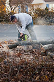 Man Cuts Tree Limbs with a Chainsaw — Stock Photo