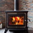 Burning Cast Iron Wood Stove Heating — Stock Photo