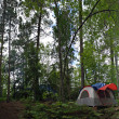 Forest Tent Camping — Stock Photo #8696336