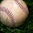 Stock Photo: Old Baseball in Grass