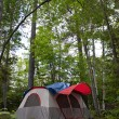 Forest Tent Camping — Stock Photo #8696560