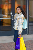 Woman Shopping — Stockfoto