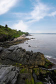 Newport Rhode Island Coastline — Stock Photo