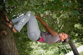 Hanging from a Tree — Stock Photo