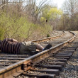 Laying on the Rails — Stock Photo
