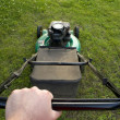 Pushing Lawn Mower — Stock Photo #8709468