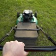 Pushing the Lawn Mower - Stock Photo