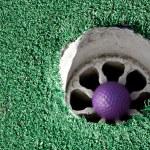 Purple Golf Ball — Stock Photo