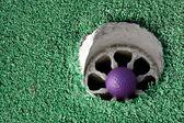 фиолетовый гольф мяч — Стоковое фото
