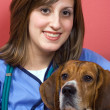 Veterinarian With a Beagle — Stock Photo #8786335