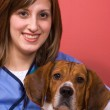Veterinarian With a Beagle — Stock Photo #8786339