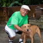 Senior Citizen Man and His Dog — Stock Photo #8789235
