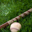 Baseball Bat and Ball — Stock Photo