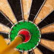 Постер, плакат: Dart Board Bulls Eye